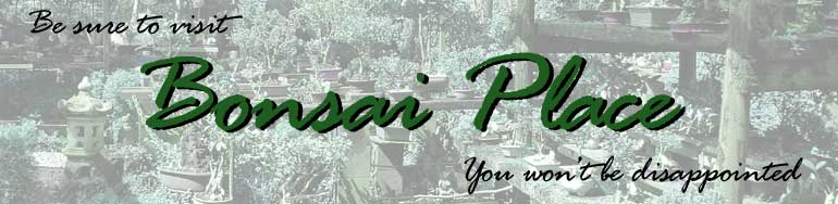 Be sure to visit Bonsai Place. You won't be disappointed.